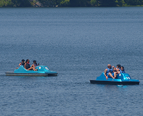 Two groups of people on separate paddle boats in the middle of the lake